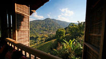 Overnight Hmong Hill Tribe Eco Tour from Chiang Rai, Chiang Rai