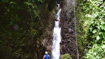 Canyoning Discovery in Dominica, Dominica, Climbing