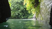 Middleham Falls and Ti'tou Gorge Half-Day Excursion, Dominica, Half-day Tours