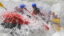 Royal Gorge Full Day Trip, Buena Vista, White Water Rafting & Float Trips