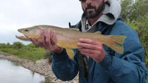 Yellowstone Full Day Wade Fishing Trip, Yellowstone National Park, Fishing Charters & Tours