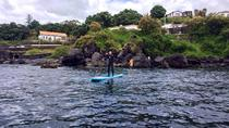 Stand Up Paddle Board Experience in the Azores , Terceira, Stand Up Paddleboarding
