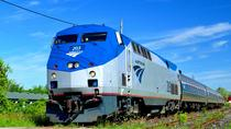 Chicago Day Trip from Milwaukee by Train, Milwaukee, Walking Tours