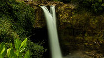 The Best Waterfall Sites and Hawaii Tropical Botanical Gardens Small Group Tour, Big Island of ...