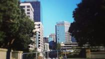 Wellington Central City Walking Tour, Wellington, Walking Tours