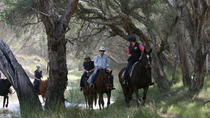 Neergabby Horse Riding Tour, Perth, Horseback Riding