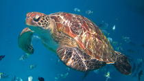3-Day Snorkel Live-aboard in Takua Pa from Khao Lak, Phuket