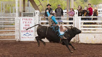 Colorado Springs Western Wednesday Rodeo, Colorado Springs, Concerts & Special Events