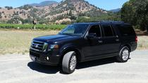 Privat transfer: San Francisco Hotel till San Francisco International Airport, San Francisco, Airport & Ground Transfers