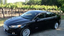 Private Transfer: San Francisco International Airport to Silicon Valley, San Francisco, Private ...