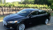 Privattransfer: San Francisco International Airport nach Silicon Valley, San Francisco, Private Transfers