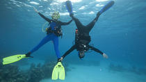 PADI Peak Performance Buoyancy Specialty Scuba Dive in Tenerife, Tenerife, Snorkeling
