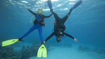SSI Peak Performance Buoyancy Specialty Scuba Dive in Tenerife, Tenerife, Snorkeling
