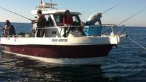 Deep Sea Fishing in Sesimbra Coast , Lisbon, Fishing Charters & Tours