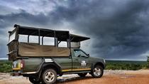 3 night Kruger Park Lodge with golf and Kruger Safari, Kruger National Park, Multi-day Tours