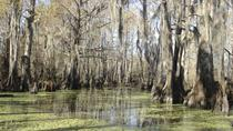 New Orleans Swamp Tour Boat Adventure With Pickup, New Orleans, Day Cruises