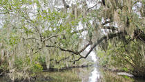 Nueva Orleans Swamp Tour Boat Adventure, New Orleans, Day Cruises