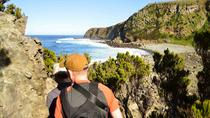 Half-day Bays of Agualva Guided Hike on Terceira Island, Ponta Delgada, Walking Tours