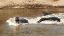 3 DAYS 2 NIGHTS MAASAI MARA PRIVATE LODGE SAFARI, Nairobi, Cultural Tours