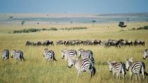 3 DAYS PRIVATE SAFARI TO MAASAI MARA NATIONAL PARK AND KEEKOROK LODGE, Nairobi, Attraction Tickets