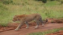 4 Days group budget safari to Maasai Mara only, Nairobi, Cultural Tours