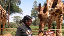 Day Tour: Giraffe Center, Elephant Orphanage and Nairobi National Park, Nairobi, Day Trips