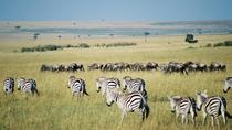 Overnight Private Safari to Maasai Mara 2, Nairobi, Overnight Tours