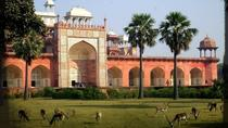 Agra Short Tour of Akbar Tomb, Gurudwara Guru Ka Tal and Dayalbagh, Agra, Cultural Tours