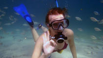 Punta Negra Diving Experience in Mallorca, Mallorca, Scuba Diving
