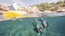 Punta Negra Diving Experience in Mallorca, Mallorca, Scuba Diving