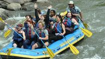 Family Friendly Animas River Raft Trip, Durango, White Water Rafting