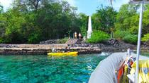 Kealakekua Bay Snorkel and Coastal Adventure, Big Island of Hawaii, Dolphin & Whale Watching