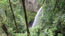Children's Rain Forest Tour in One Day, La Fortuna, Eco Tours