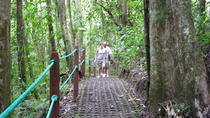 Combo Tour with Hanging Bridge,Waterfall, Volcano Hike and Tabacón Hot Springs, La Fortuna, Hiking ...