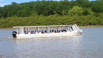 Palo Verde National Park Boat Tour with Lunch, Tamarindo