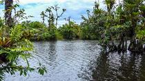 Pure Nature Safari Float Adventure, La Fortuna, Float Trips