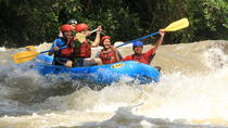 Ziplining and Whitewater Rafting Combo Tour, La Fortuna, Ziplines