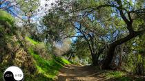 Half Day Mountain Bike Tour Near Orange County, Anaheim & Buena Park, Private Sightseeing Tours