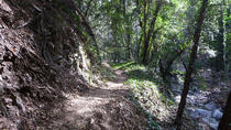 Private Half Day Mountain Bike Tour Near Los Angeles, Los Angeles, Bike & Mountain Bike Tours