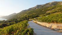 Wine Lover's Tour of Peljesac Peninsula, Dubrovnik, Wine Tasting & Winery Tours