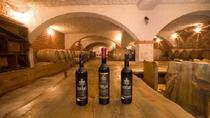 Peljesac Peninsula Food & Wine Tour from Split or Trogir, Split, Wine Tasting & Winery Tours