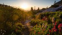 Big Meadows Tonahutu Trail, Estes Park, 4WD, ATV & Off-Road Tours