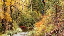 Upper Clear Creek plus Cliffside Zipline, Breckenridge, White Water Rafting & Float Trips