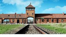 Auschwitz Shared Group Tour from Krakow, Krakow, Day Trips