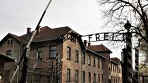 Full-Day, Private Auschwitz-Birkenau Tour from Krakow, Krakow, Private Day Trips