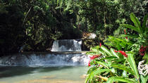 Jamaican South Coast Private Sightseeing Tour, Montego Bay, Half-day Tours