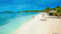 Negril Highlights Private Tour, Montego Bay, Half-day Tours