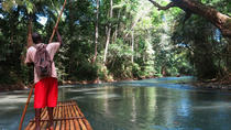 Private Dunn's River Falls and Martha Brae River Rafting Tour from Negril, Negril, Half-day Tours