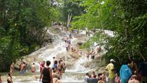 Private Dunn's River Falls und Martha Brae River Rafting Tour von Montego Bay, Montego Bay, Private Sightseeing Tours