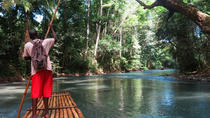 Private Dunn's River Falls und Martha Brae River Rafting Tour von Negril, Negril, Private Touren